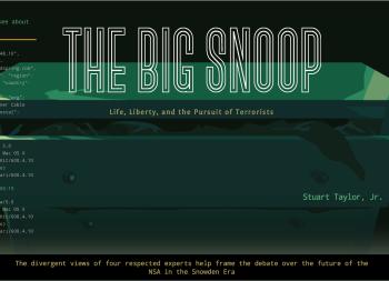 Big Snoop - Brookings Essay Landing Image